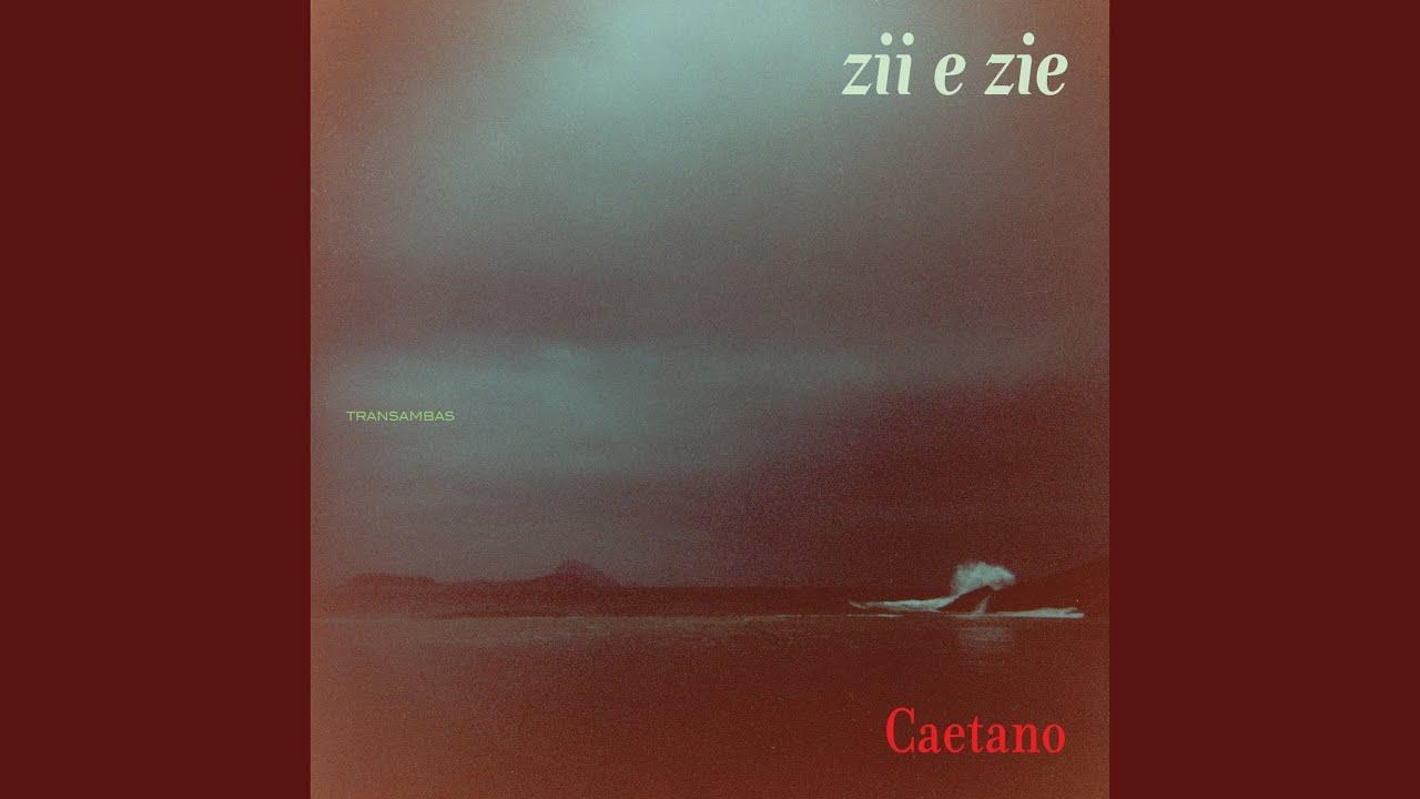 Zii & Zie (2009)