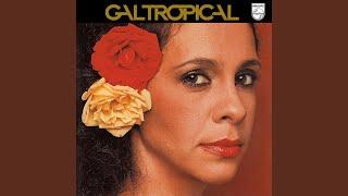 Gal Tropical (1979)